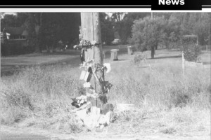 The pole on Hillview St where Senior Constable Thornton was killed.