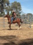15 December 2013 Back in the saddle