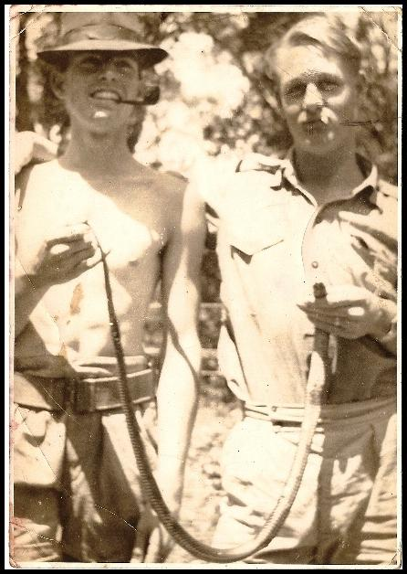 On the left is former Assistant Commissioner, Lance Stirton(Cadet No. 559) with Jack Bailey (Cadet No. 613) holding the blunt end of a very much DEAD red-bellied blacksnake. Jack being the junior two, he was allowed (directed?) to hold the bitey end for the photo. It was taken at Buff Point around 1947 - where Lance's parents had a weekender...Lance and some of his male friends, together with his sister (Betty) and her girlfriends, most of whom were workmates, would spend some weekends at this place - a million miles from no-where in those days then travel back to Sydney on Sunday night by bus then train. The snake was killed and (being cadets) carefully curled up before being placed in the sandy-dirt floor of the back-yard 'dunny' and then they waited. The door on the old dunny inwards. Jack's (now wife of nearly 60 yrs) was first to enter and close the door to relieve herself but when her eyes became accustomed to the darkness from outside sunlight, the bottom hinge was taken off the door as it blasted open. What a terrible joke to play on someone who always feared snakes. But we were waiting on the back step for her to wake up to what it was. Thankfully for Jack she was the forgiving type. She is still with him!!!