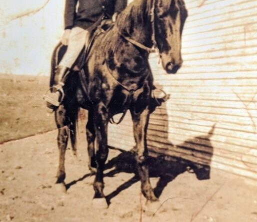 """This is a photo of Linda Mitselburg's grandfather, John James """"Jack"""" Duncan. He was a mounted policeman in Wilcannia in the late 1920s. We are not sure of where the photo was taken, as he was also stationed in White Cliffs, Broken Hill, Menindee, Howlong, Wentworth and Ivanhoe during his time in the police. If you have an information that you can give us, it would be greatly appreciated."""